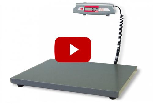 VIDEO: Cân bàn điện tử OHAUS SD